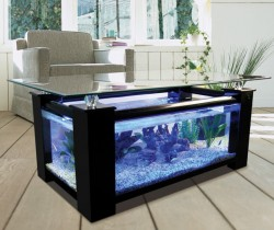 Black coffee table fish tank