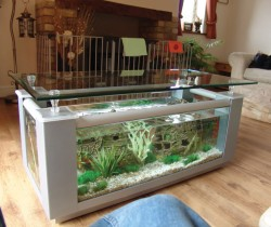 Silver coffee table fish tank