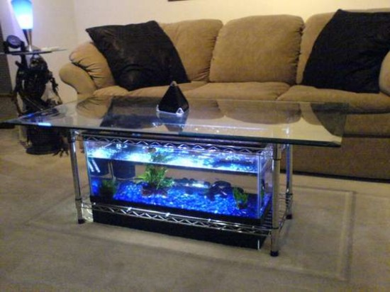 Blue coffee table fish tank