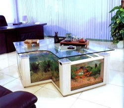 Custom innovative coffee table fish tank