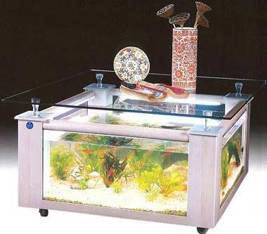 Designer coffee table fish tank