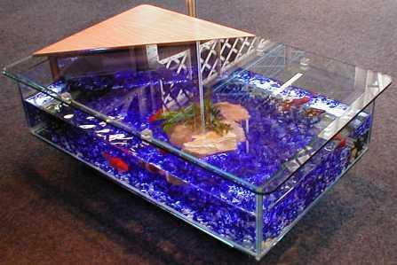DIY coffee table fish tank Glass Fish Tanks
