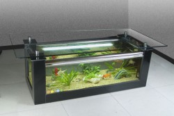 Rectangular coffee table fish tank