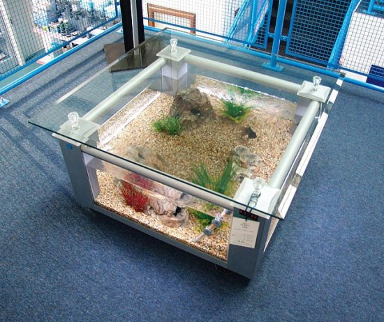 Silver coffee table aquarium