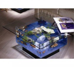 Small coffee table fish tank