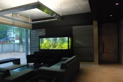 This is a high end planted aquarium installed at the of office of CMD of Arvind Mills Ltd.