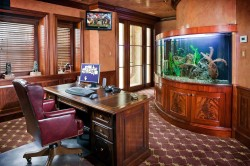 Fish tank for home office.