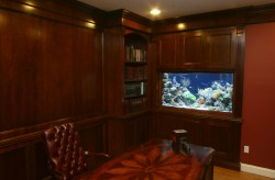 Beautiful wall aquarium in a classic wood home office. Aquarium designed and installed by www.okeanosgroup.com, photo courtesy of Okeanos Group.
