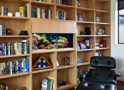 Aquarium in a book shelf in a home office.