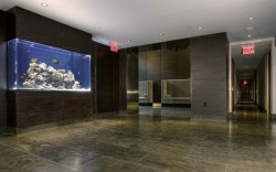 Large aquarium in a residential building in NYC. Aquarium designed and installed by www.okeanosgroup.com, photo courtesy of Okeanos Group.