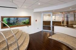 Large wall office aquarium