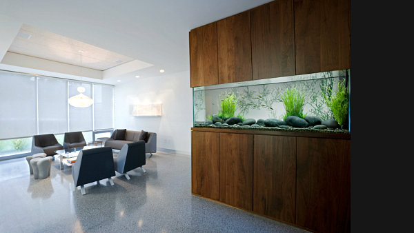 Modern wall fish tank Glass Fish Tanks