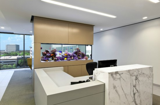 Office separating fish tank