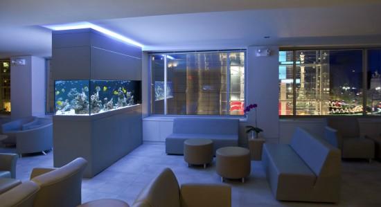 Saltwater office fish tank