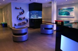 Large fish tank in a small office lobby. Aquarium designed and installed by www.okeanosgroup.com, photo courtesy of Okeanos Group.