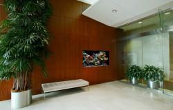 Wall aquarium in office waiting area.