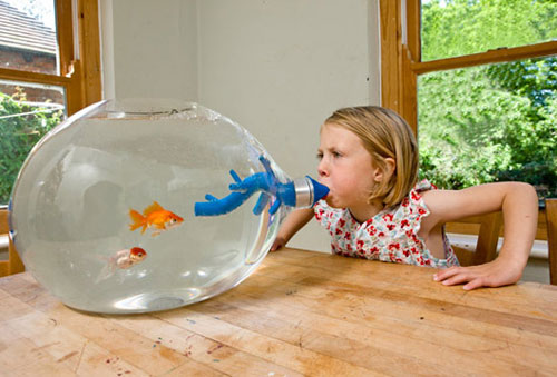 Blowing fish tank