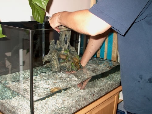 Cleaning your aquarium