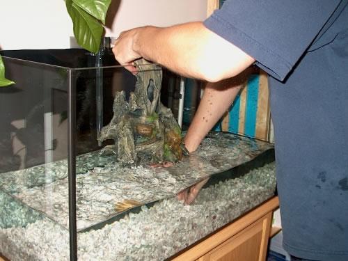 Cleaning your aquarium