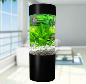 Difference Between Glass And Acrylic Fish Tanks Glass