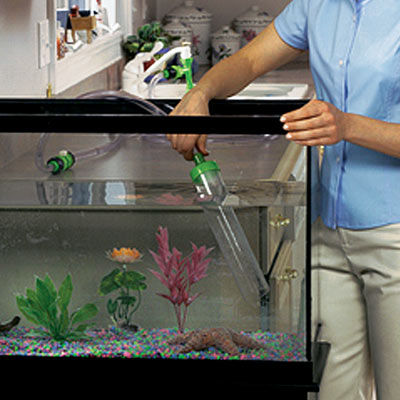 Glass fish tanks for How to keep fish tank clean without changing water