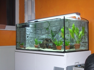 What 39 s the best way to connect sump to non drilled tank for Connecting fish tanks